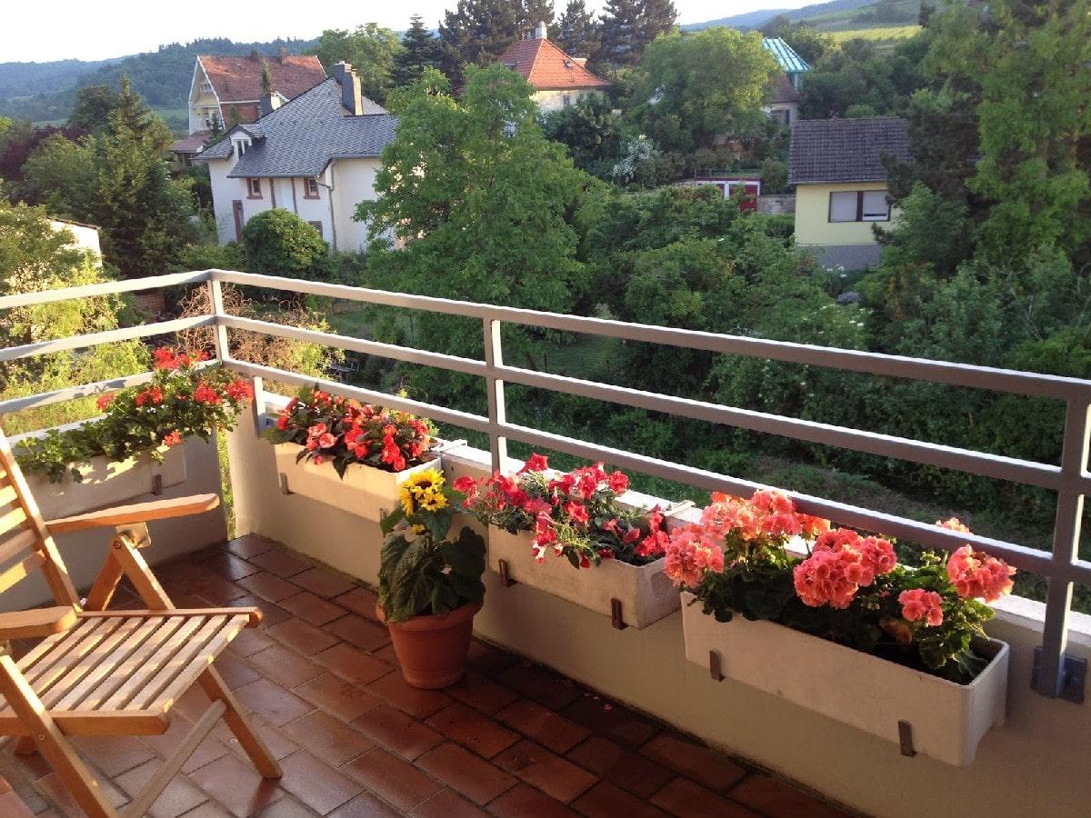 Balkón vysadený letničkami
