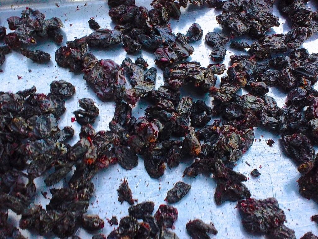 Sušené plody zemolezu kamčatského